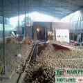 lắp kho lạnh bảo quản hạt giống 43