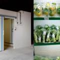 thiết kế kho lạnh để bảo quản thực phẩm 12