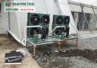 Hệ thống kho lạnh bảo quản cho khu sản xuất rau sạch của tập đoàn vingroup - công ty vineco 1