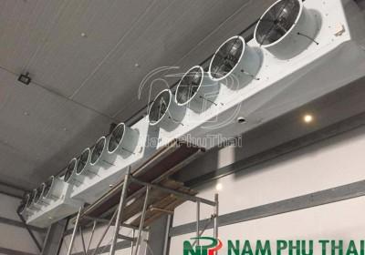 Thiết kế và thi công hệ thống kho lạnh ngoại quan tại cảng Đình Vũ - Hải Phòng 1