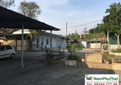 Lắp đặt kho lạnh bảo quản măng chế biến xuất khẩu công ty Yên Thành, Yên Bái