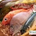 Cách giữ hải sản tươi lâu cho bà nội trợ