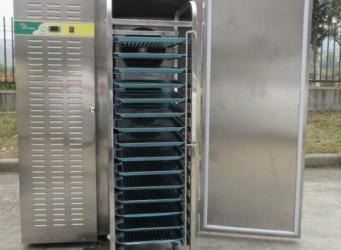 Tủ cấp đông nhanh mini Frozen FRBF-830L