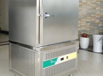 Tủ cấp đông nhanh mini Frozen FRBF-220L