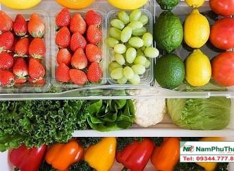 Lắp đặt kho lạnh bảo quản rau quả sạch